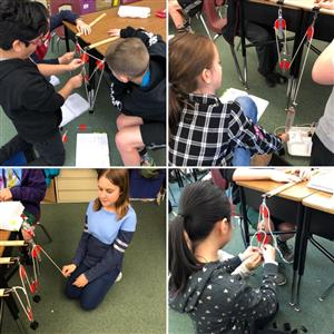 Engineering and design in 5th grade